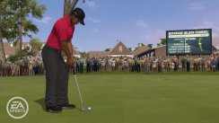 Tiger Woods PGA Tour 11 Move
