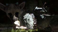 The Last Guardian med problemer
